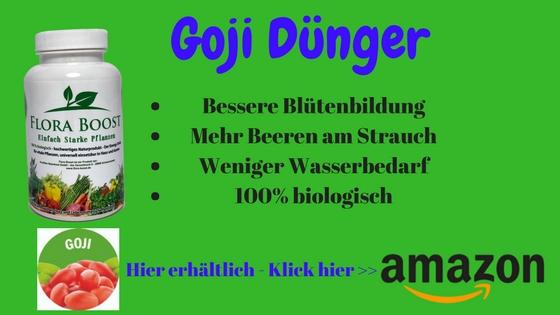 Goji Pflanzen Dünger