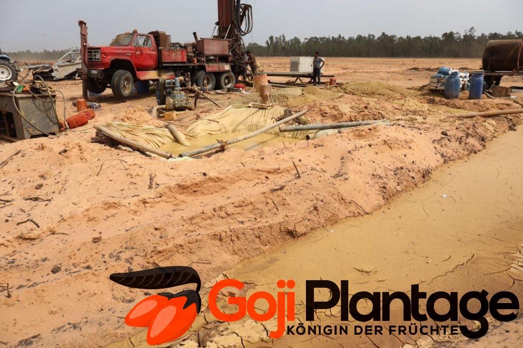 Goji Plantage Marokko Brunnenbau