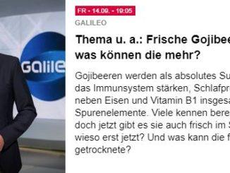 Galileo Sendung über die Goji Beere